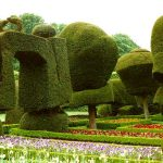 History of Topiary
